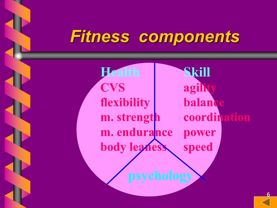 Fitness components HealthSkill CVSagility flexibilitybalance m. strengthcoordination m. endurancepower body leanessspeed psychology 6