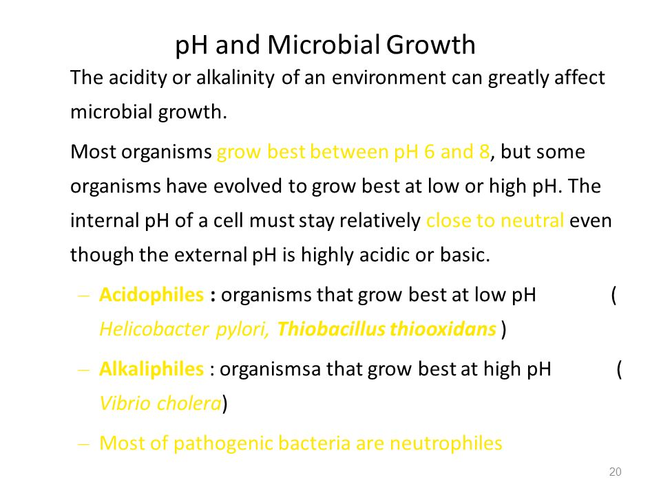 20 pH and Microbial Growth The acidity or alkalinity of an environment can greatly affect microbial growth. Most organisms grow best between pH 6 and