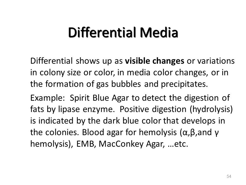 54 Differential Media Differential shows up as visible changes or variations in colony size or color, in media color changes, or in the formation of g