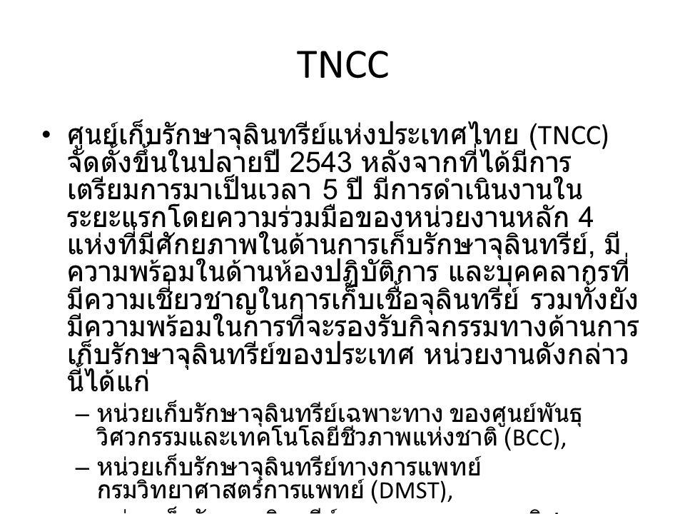 TNCC ศูนย์เก็บรักษาจุลินทรีย์แห่งประเทศไทย (TNCC) จัดตั้งขึ้นในปลายปี 2543 หลังจากที่ได้มีการ เตรียมการมาเป็นเวลา 5 ปี มีการดำเนินงานใน ระยะแรกโดยความร่วมมือของหน่วยงานหลัก 4 แห่งที่มีศักยภาพในด้านการเก็บรักษาจุลินทรีย์, มี ความพร้อมในด้านห้องปฏิบัติการ และบุคคลากรที่ มีความเชี่ยวชาญในการเก็บเชื้อจุลินทรีย์ รวมทั้งยัง มีความพร้อมในการที่จะรองรับกิจกรรมทางด้านการ เก็บรักษาจุลินทรีย์ของประเทศ หน่วยงานดังกล่าว นี้ได้แก่ – หน่วยเก็บรักษาจุลินทรีย์เฉพาะทาง ของศูนย์พันธุ วิศวกรรมและเทคโนโลยีชีวภาพแห่งชาติ (BCC), – หน่วยเก็บรักษาจุลินทรีย์ทางการแพทย์ กรมวิทยาศาสตร์การแพทย์ (DMST), – หน่วยเก็บรักษาจุลินทรีย์ทางการเกษตร กรมวิชาการ เกษตร (DOA) และ – ศูนย์จุลินทรีย์ สถาบันวิจัยวิทยาศาสตร์และเทคโนโลยี แห่งประเทศไทย (TISTR)