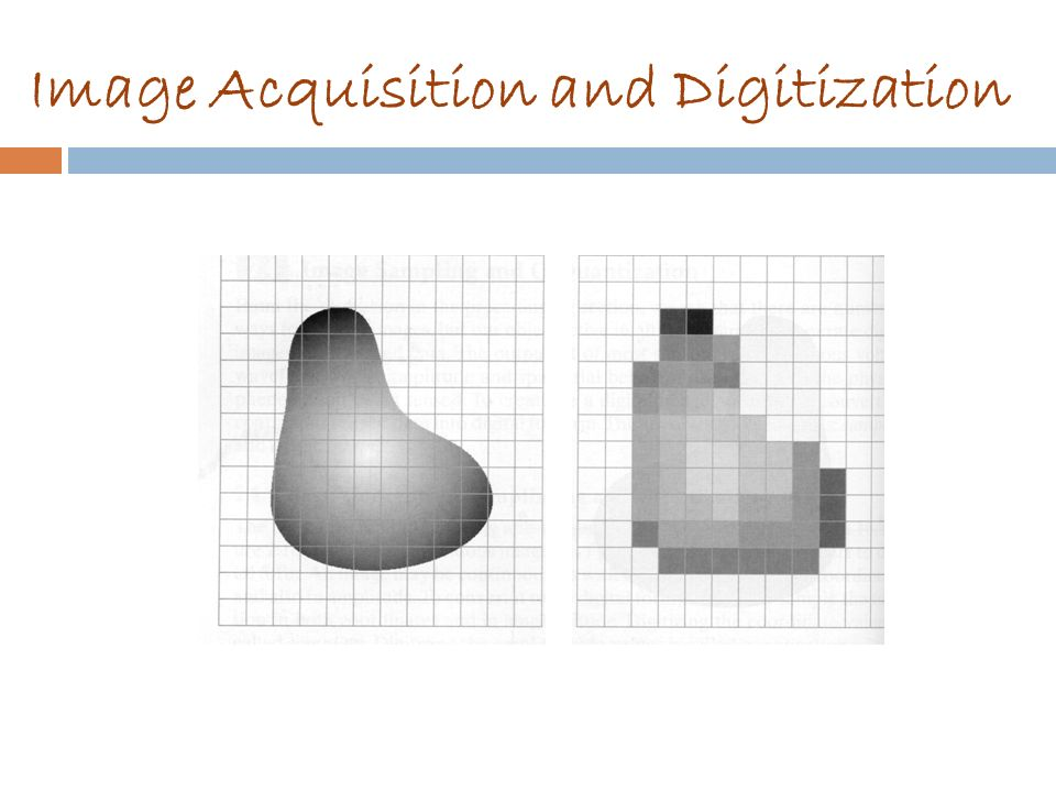 Image Acquisition and Digitization