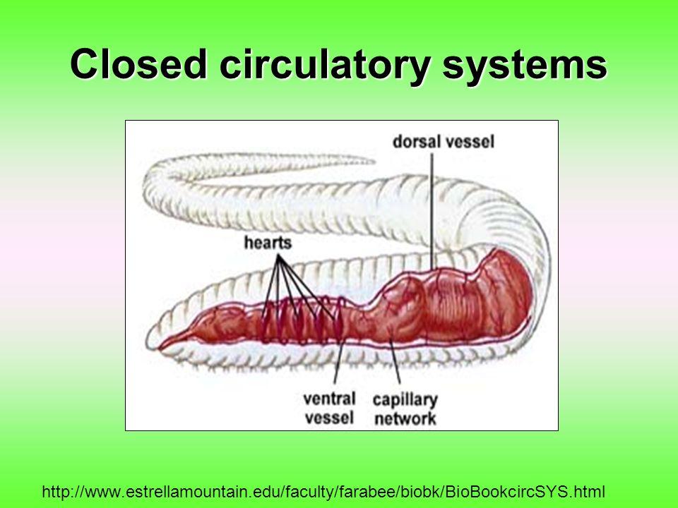 Closed circulatory systems http://www.estrellamountain.edu/faculty/farabee/biobk/BioBookcircSYS.html