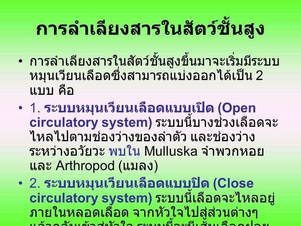 Closed circulatory systems http://dragon.seowon.ac.kr/~bioedu/bio/ch39.htm