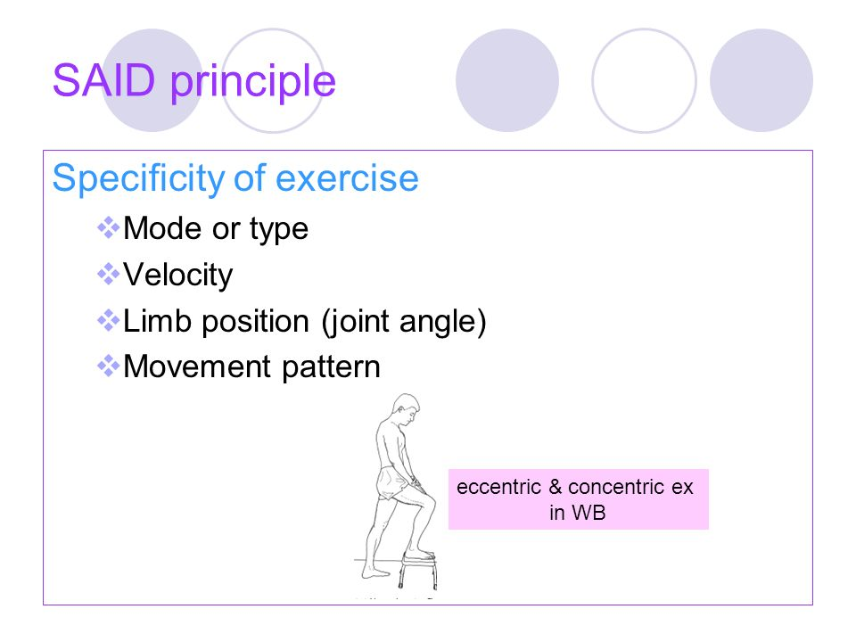 Reversible principle Adaptive changes in body's systems are transient Detaining  decrease muscle performance within 1-2 week