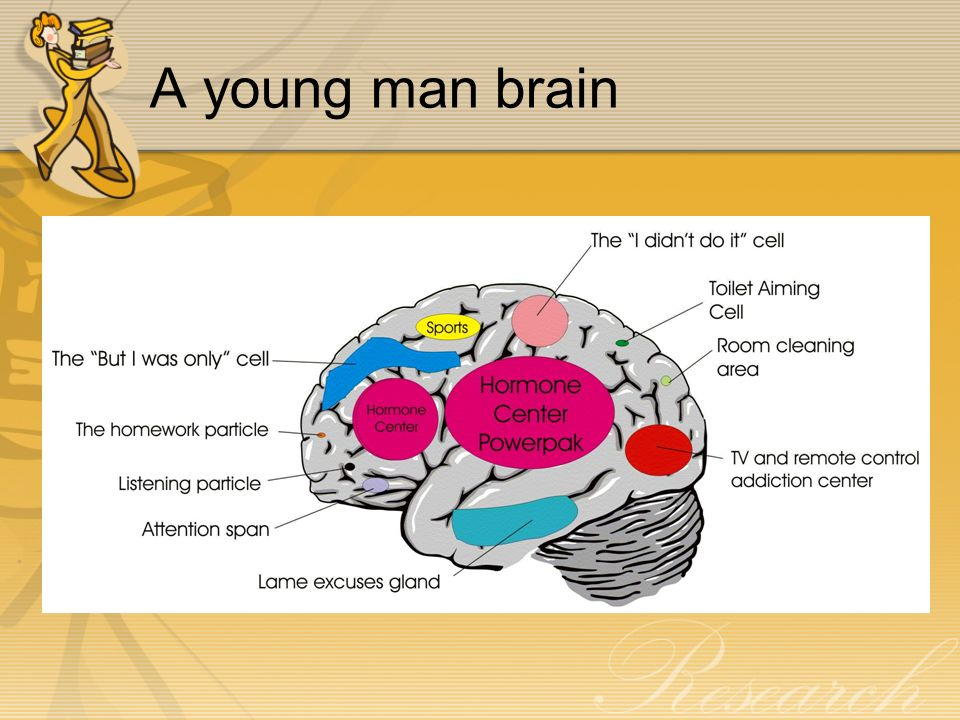A young man brain