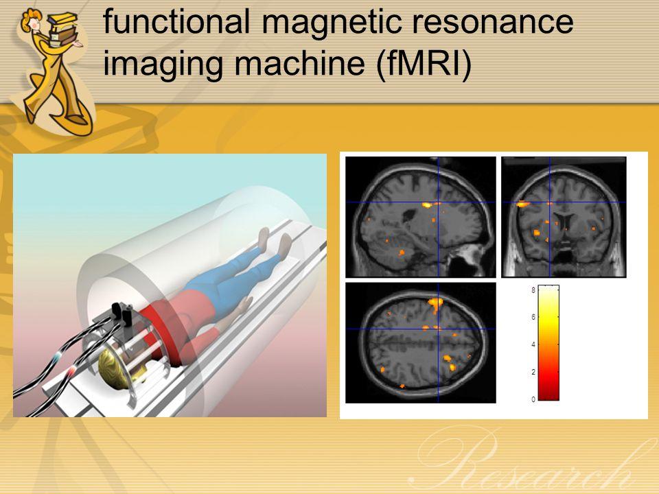 Human Brain ventralputamen a region thought to process feeling of reward ( สวนที่เกี่ยวข้องกับความรู้สึกพอใจ ) medialprefrontalcortex an area believed to be involved in higher- level thinking ( เป็นบริเวณที่เชื่อว่ามีส่วนเกี่ยวข้องใน การทำหน้าที่เกี่ยวกับอารมณ์และการตัดสินใจในระดับที่ สูงขึ้น ) The brain region typically implicated in emotional processing มีความสำคัญในการควบคุม พฤติกรรมและอารมณ์ และการตัดสินใจในภาวะฉุกเฉิน รวมถึงการแสดงออกของพฤติกรรมทางอารมณ์ให้ เหมาะสมกับสังคม LimbicSystem