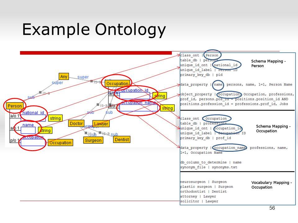 Example Ontology 56
