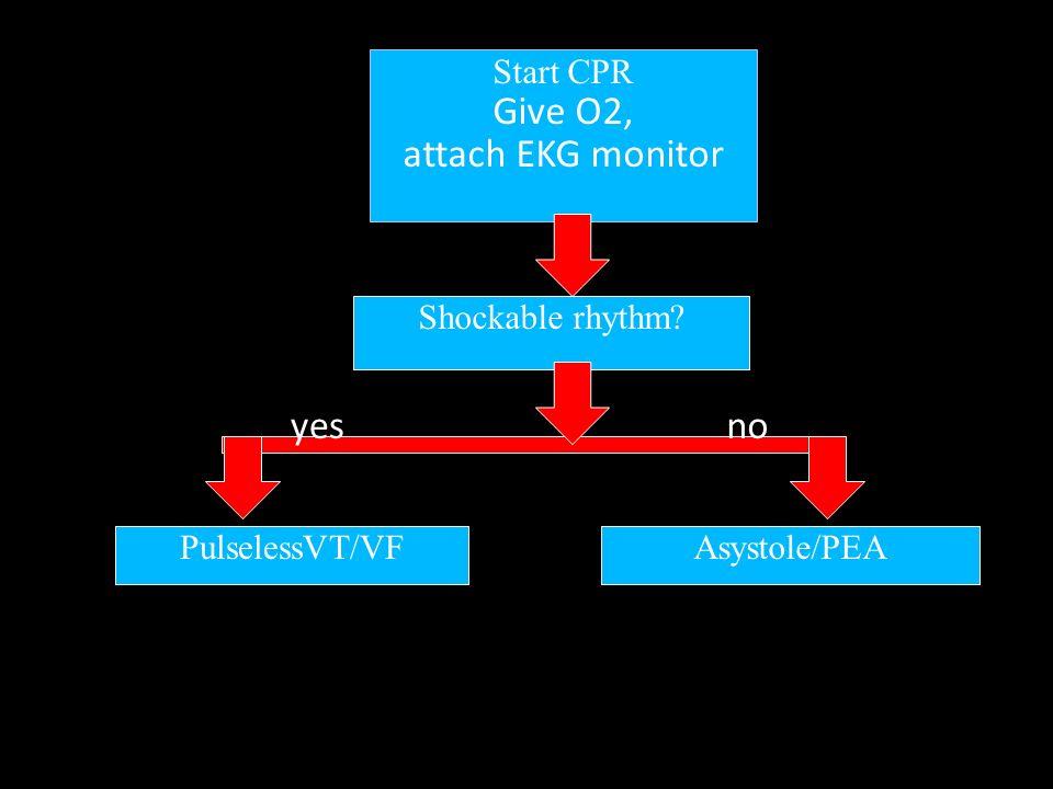 PulselessVT/VF shock CPR 2min, IV assess EKG Shockable rhythm CPR 2min, adrenaline EKG Shockable rhythm CPR 2 min,amiodarone