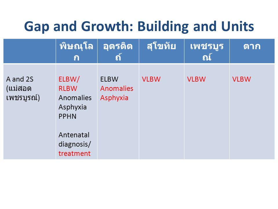 Gap and Growth: Building and Units พิษณุโล ก อุตรดิต ถ์ สุโขทัยเพชรบูร ณ์ ตาก A and 2S ( แม่สอด เพชรบูรณ์ ) ELBW/ RLBW Anomalies Asphyxia PPHN Antenatal diagnosis/ treatment ELBW Anomalies Asphyxia VLBW