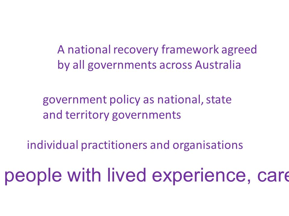 people with lived experience, carers and advocates individual practitioners and organisations government policy as national, state and territory gover
