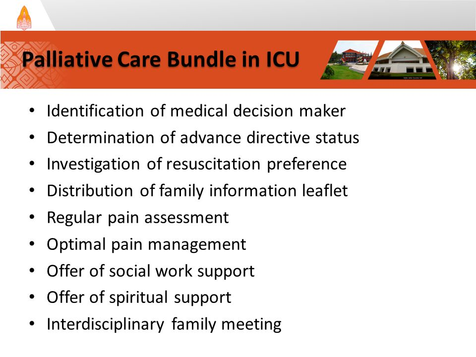 Identification of medical decision maker Determination of advance directive status Investigation of resuscitation preference Distribution of family information leaflet Regular pain assessment Optimal pain management Offer of social work support Offer of spiritual support Interdisciplinary family meeting Palliative Care Bundle in ICU