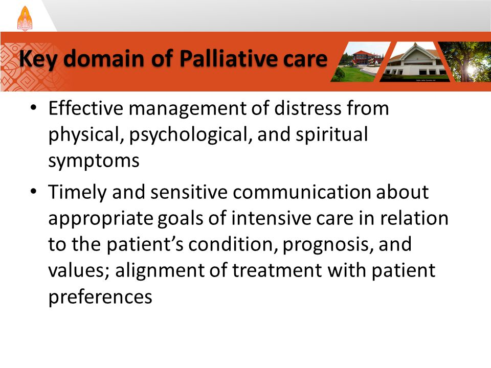 Effective management of distress from physical, psychological, and spiritual symptoms Timely and sensitive communication about appropriate goals of intensive care in relation to the patient's condition, prognosis, and values; alignment of treatment with patient preferences Key domain of Palliative care