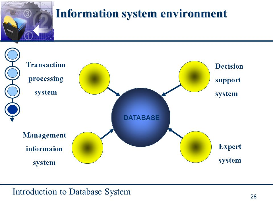 Introduction to Database System 28 Information system environment DATABASE Transaction processing system Decision support system Expert system Management informaion system