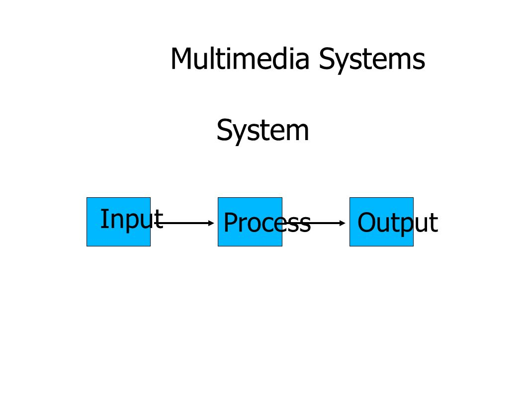 Multimedia Systems Input ProcessOutput System
