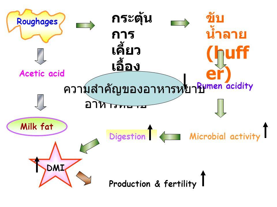 Roughages กระตุ้น การ เคี้ยว เอื้อง ขับ น้ำลาย (buff er) Acetic acid Rumen acidity Digestion Production & fertility Microbial activity Milk fat DMI ความสำคํญของ อาหารหยาบ ความสำคัญของอาหารหยาบ