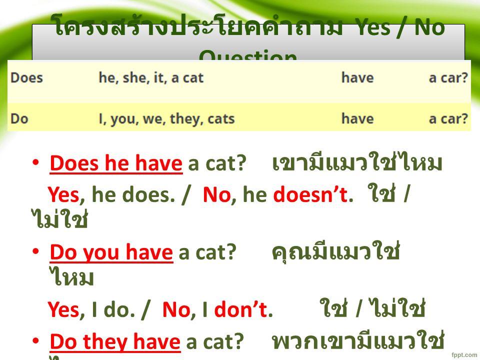 โครงสร้างประโยคคำถาม Yes / No Question Does he have a cat.