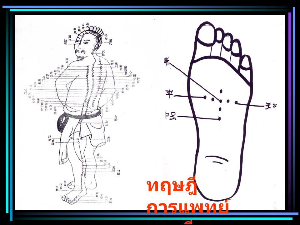 ทฤษฎี การแพทย์ แผนจีน