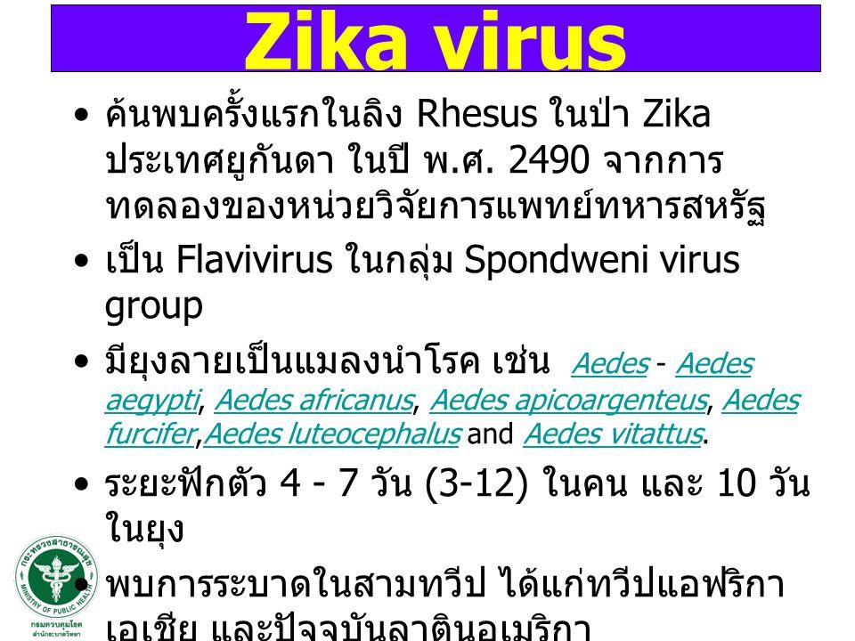 ค้นพบครั้งแรกในลิง Rhesus ในป่า Zika ประเทศยูกันดา ในปี พ. ศ. 2490 จากการ ทดลองของหน่วยวิจัยการแพทย์ทหารสหรัฐ เป็น Flavivirus ในกลุ่ม Spondweni virus