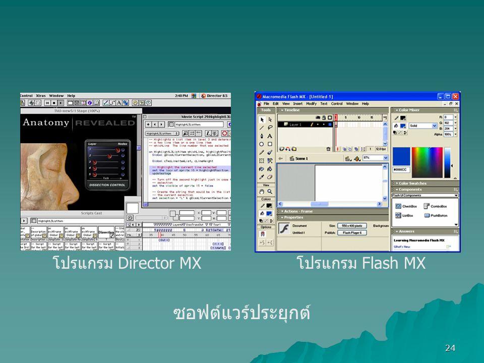 24 ซอฟต์แวร์ประยุกต์ โปรแกรม Flash MX โปรแกรม Director MX