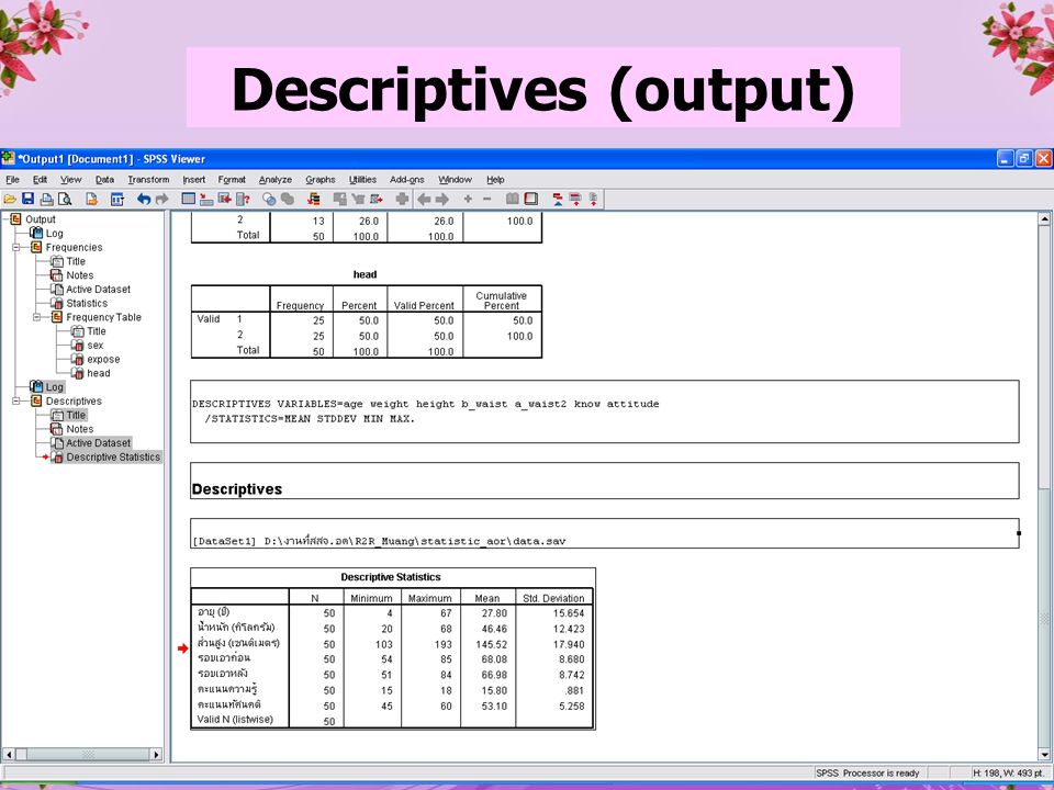 26 Descriptives (output)