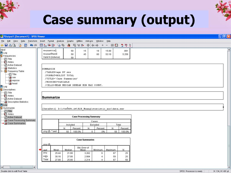 28 Case summary (output)