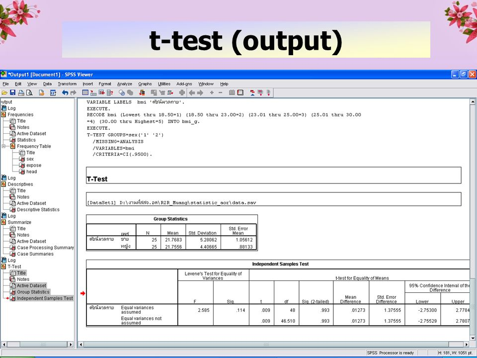 33 t-test (output)