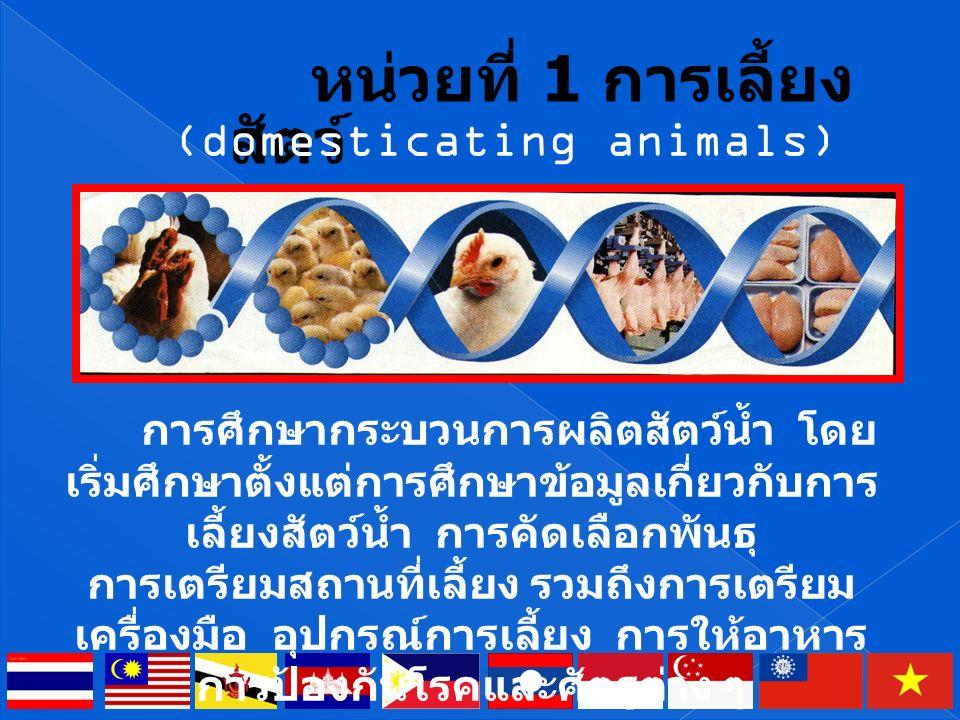 ปัจจุบันเนื้อสัตว์และผลิตภัณฑ์จาก สัตว์เป็นอาหารที่สำคัญของมนุษย์ ได้แก่ เนื้อ นม ไข่ ซึ่งให้สารอาหาร ที่สำคัญต่อร่างกายมนุษย์โดยเฉพาะ โปรตีน ดังนั้นเนื้อสัตว์และผลิตภัณฑ์ จากสัตว์จึงเป็นสิ่งจำเป็นของมนุษย์ ตราบใดที่มนุษย์ยังบริโภคเนื้อสัตว์ อยู่