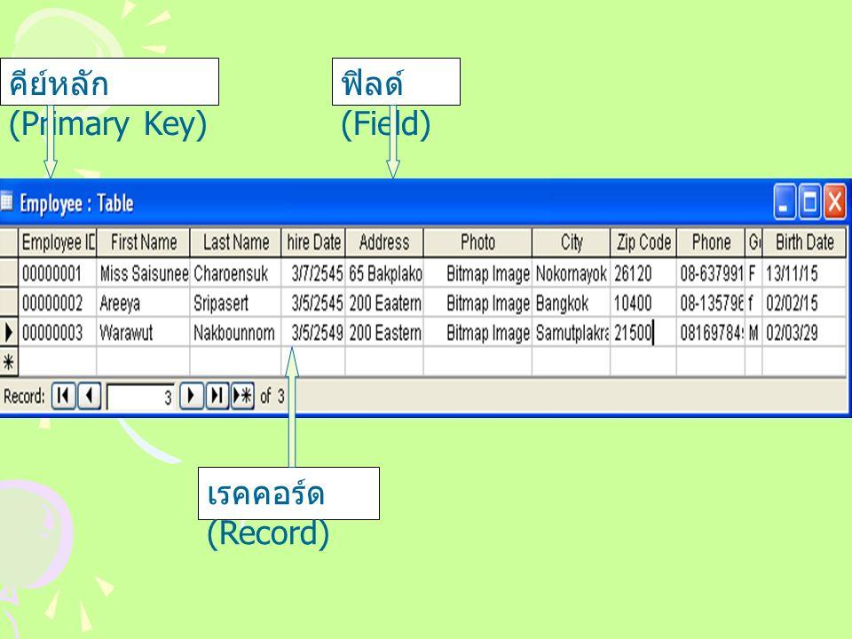 คีย์หลัก (Primary Key) ฟิลด์ (Field) เรคคอร์ด (Record)
