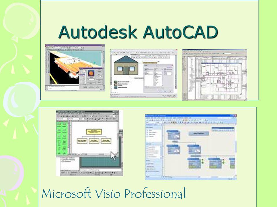 Microsoft Visio Professional Autodesk AutoCAD