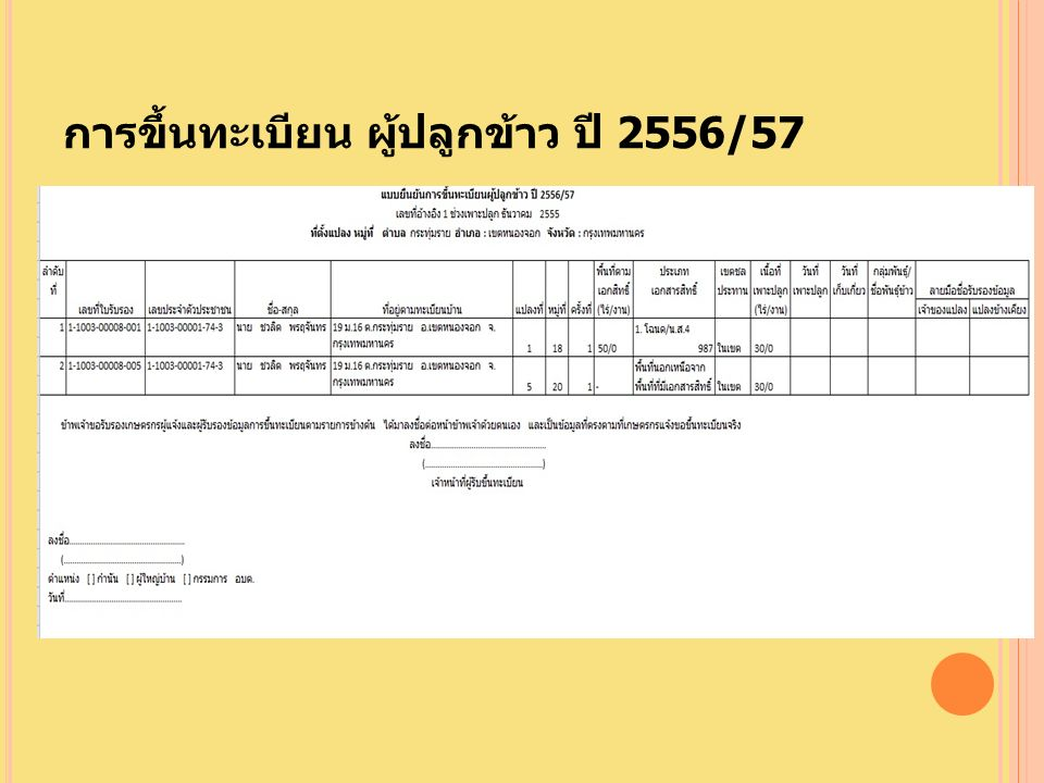การขึ้นทะเบียน ผู้ปลูกข้าว ปี 2556/57