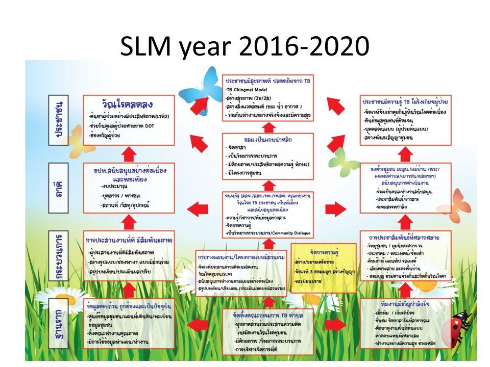 SLM year 2016-2020