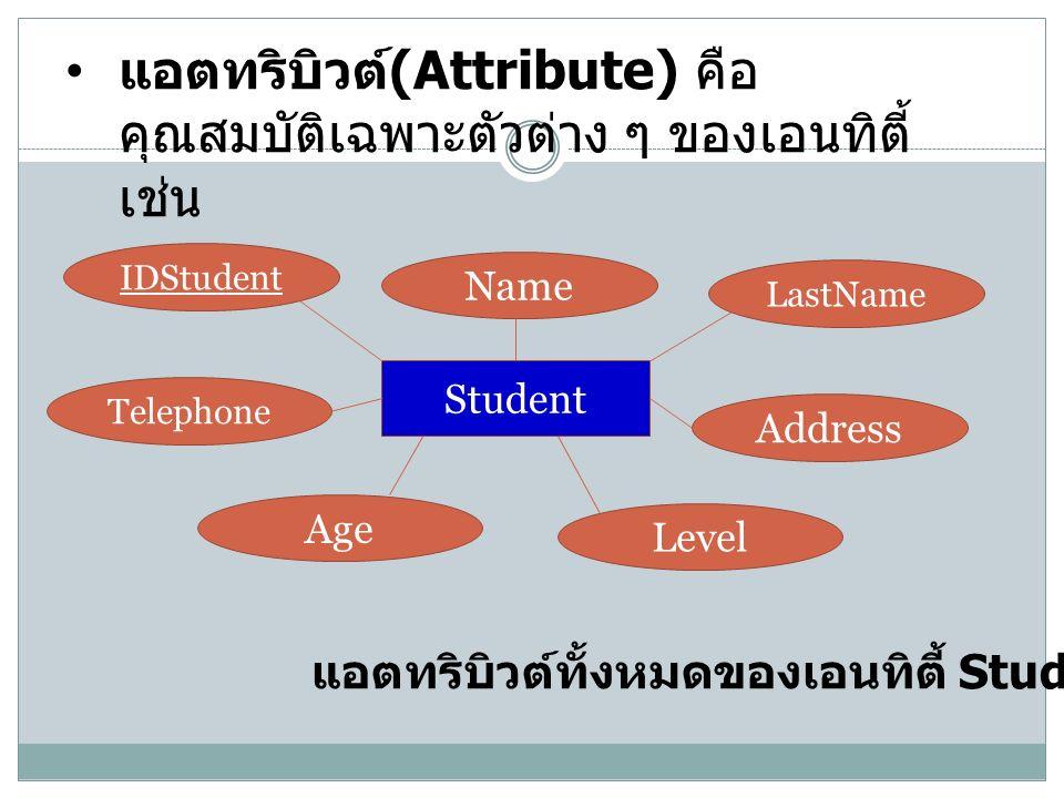 แอตทริบิวต์ (Attribute) คือ คุณสมบัติเฉพาะตัวต่าง ๆ ของเอนทิตี้ เช่น Student IDStudent LastName Name Address Telephone Age Level แอตทริบิวต์ทั้งหมดของเอนทิตี้ Student