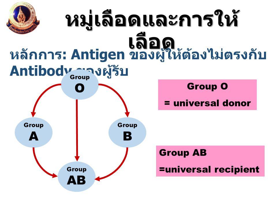 หลักการ : Antigen ของผู้ให้ต้องไม่ตรงกับ Antibody ของผู้รับ หมู่เลือดและการให้ เลือด Group O Group B Group AB Group A Group O = universal donor Group
