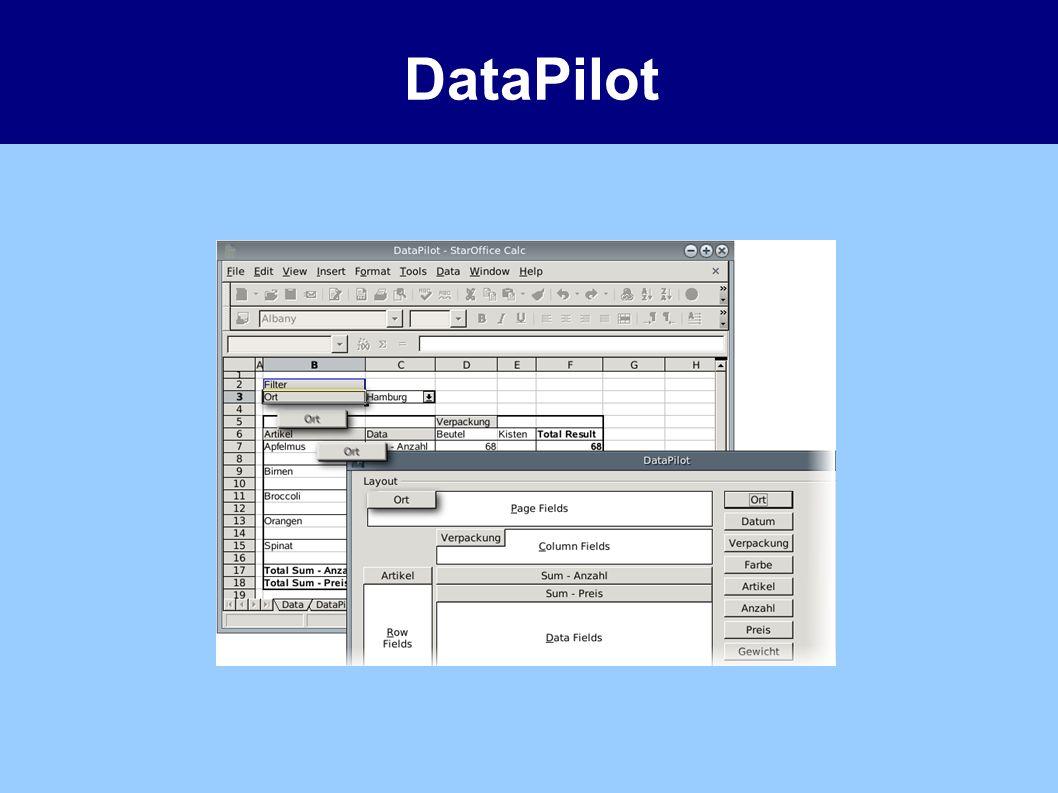 DataPilot