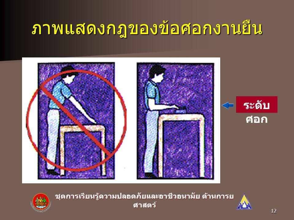 ชุดการเรียนรู้ความปลอดภัยและอาชีวอนามัย ด้านการย ศาสตร์ 11 ภาพแสดงกฎของข้อศอกงาน นั่ง ระดับ ศอก