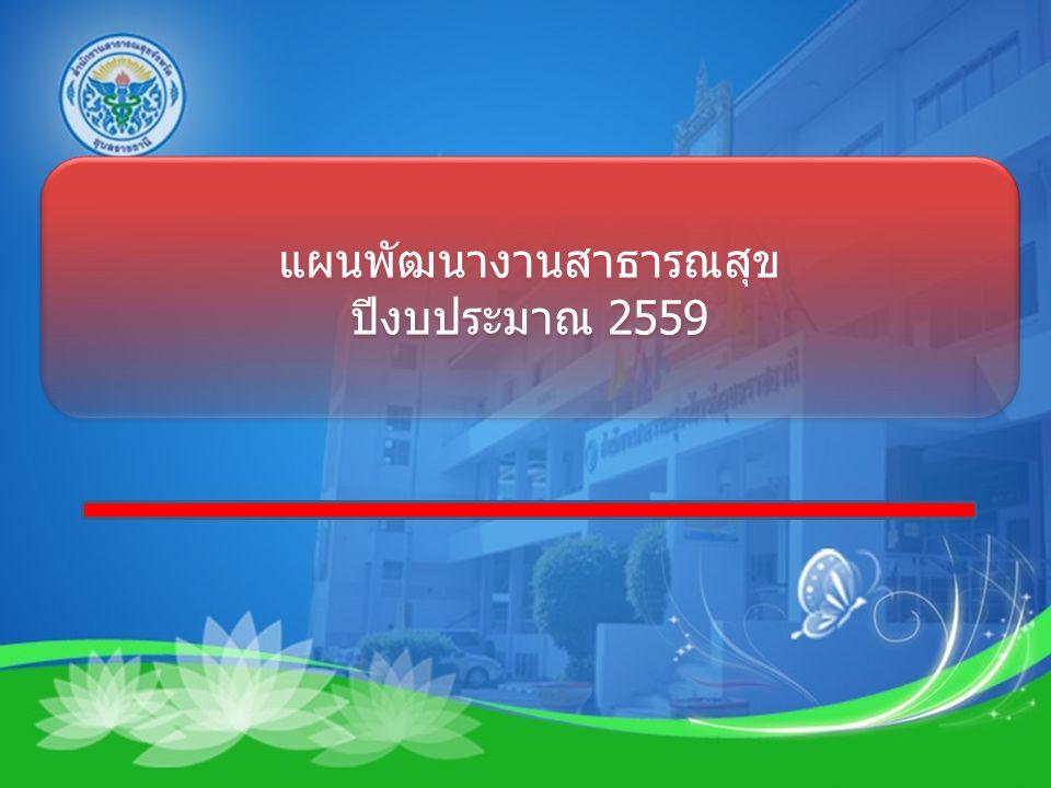 แผนพัฒนางานสาธารณสุข ปีงบประมาณ 2559