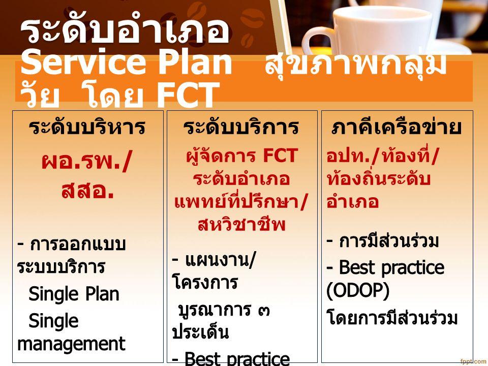 ระดับอำเภอ Service Plan สุขภาพกลุ่ม วัย โดย FCT
