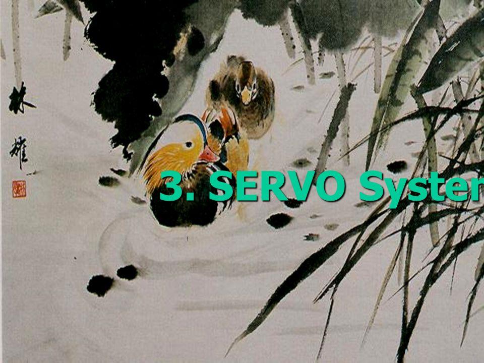 3. SERVO System