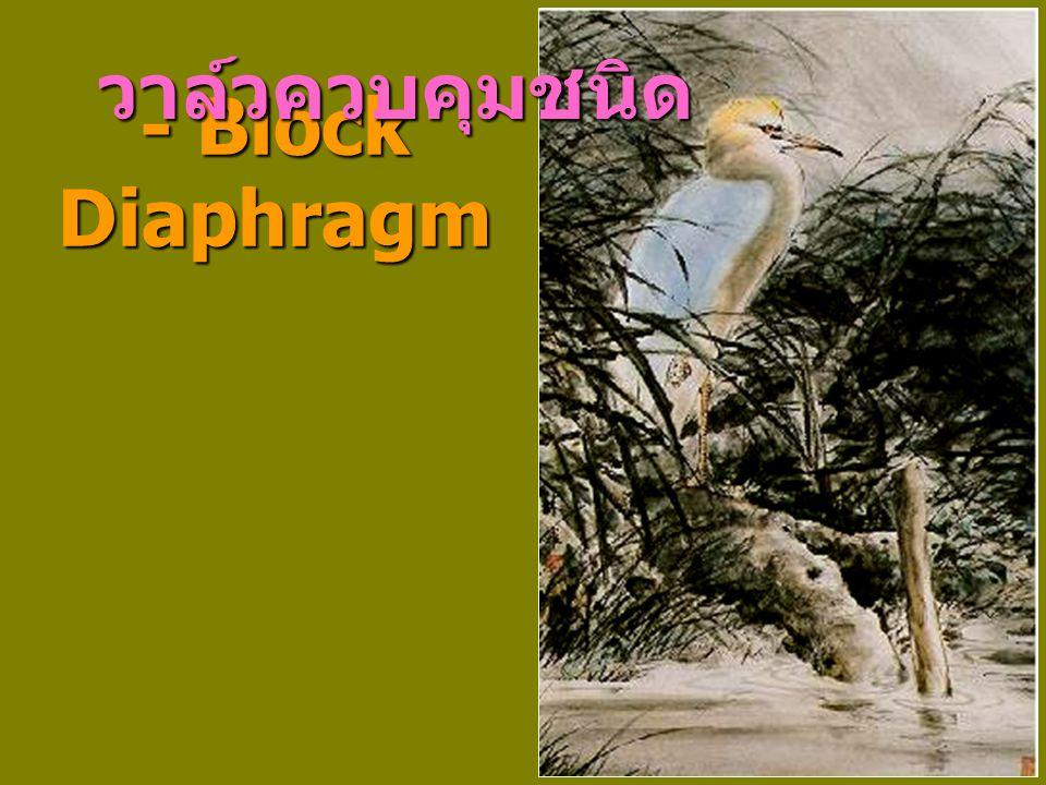 - Block Diaphragm วาล์วควบคุมชนิด