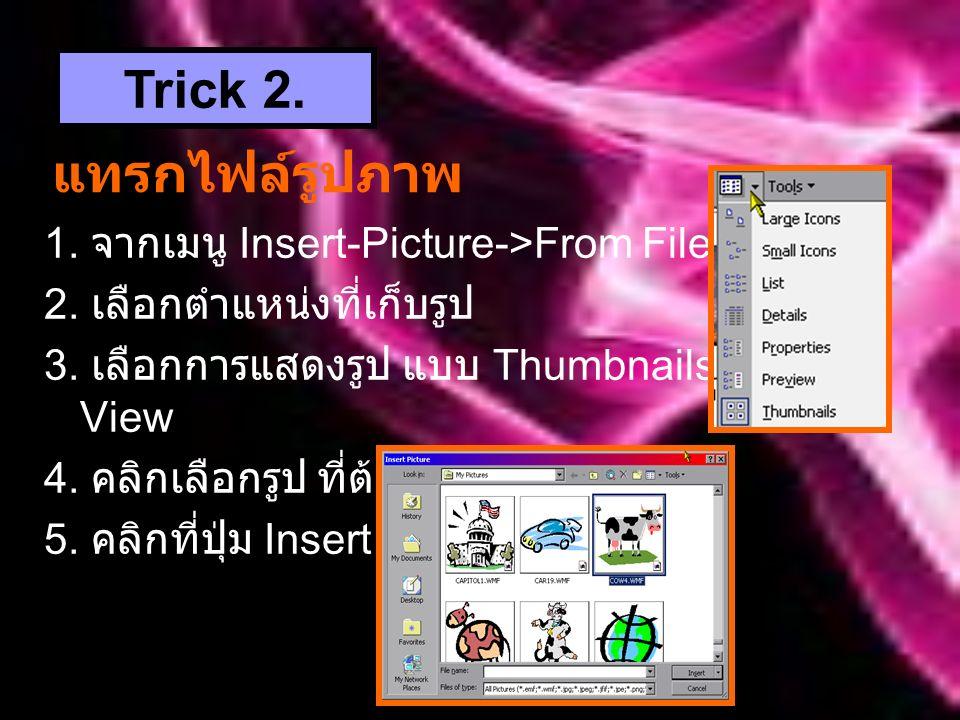 แทรกไฟล์รูปภาพ 1.จากเมนู Insert-Picture->From File 2.