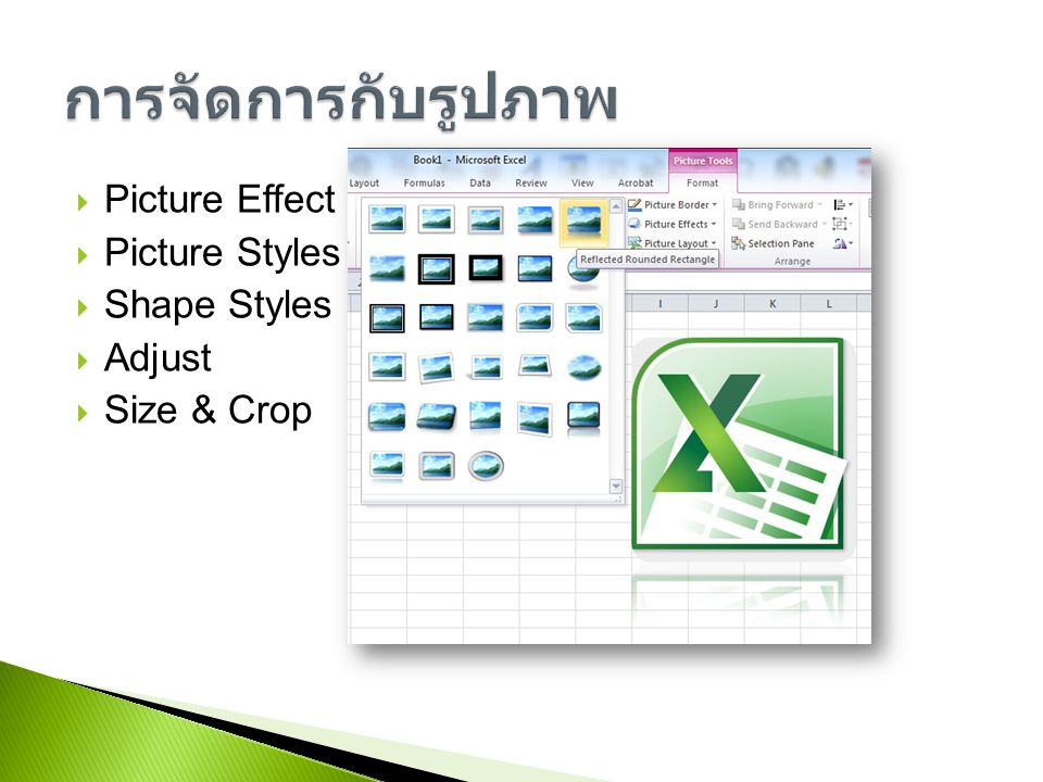 Picture Effect  Picture Styles  Shape Styles  Adjust  Size & Crop