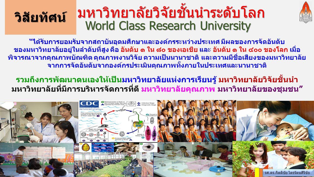 World Class Research University วิสัยทัศน์ มหาวิทยาลัยวิจัยชั้นนำระดับโลก รศ.ดร.กิตติชัย ไตรรัตนศิริขัย ได้รับการยอมรับจากสถาบันอุดมศึกษาและองค์กรระหว่างประเทศ มีผลของการจัดอันดับ ของมหาวิทยาลัยอยู่ในลำดับที่สูง คือ อันดับ ๑ ใน ๘๐ ของเอเชีย และ อันดับ ๑ ใน ๔๐๐ ของโลก เมื่อ พิจารณาจากคุณภาพบัณฑิต คุณภาพงานวิจัย ความเป็นนานาชาติ และความมีชื่อเสียงของมหาวิทยาลัย จากการจัดอันดับจากองค์กรประเมินคุณภาพทั้งภายในประเทศและนานาชาติ รวมถึงการพัฒนาตนเองให้เป็นมหาวิทยาลัยแห่งการเรียนรู้ มหาวิทยาลัยวิจัยชั้นนำ มหาวิทยาลัยที่มีการบริหารจัดการที่ดี มหาวิทยาลัยคุณภาพ มหาวิทยาลัยของชุมชน