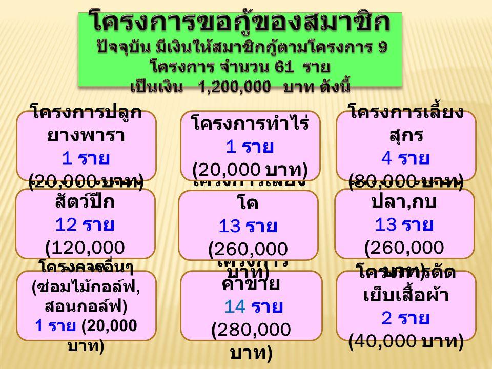 โครงการตัด เย็บเสื้อผ้า 2 ราย (40,000 บาท ) โครงการ ค้าขาย 14 ราย (280,000 บาท ) โครงการเลี้ยง โค 13 ราย (260,000 บาท ) โครงการเลี้ยง ปลา, กบ 13 ราย (260,000 บาท ) โครงการเลี้ยง สัตว์ปีก 12 ราย (120,000 บาท ) โครงการเลี้ยง สุกร 4 ราย (80,000 บาท ) โครงการอื่นๆ ( ซ่อมไม้กอล์ฟ, สอนกอล์ฟ ) 1 ราย (20,000 บาท ) โครงการทำไร่ 1 ราย (20,000 บาท ) โครงการปลูก ยางพารา 1 ราย (20,000 บาท )