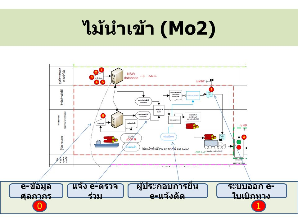 ไม้นำเข้า (Mo2) e- ข้อมูล ศุลกากร แจ้ง e- ตรวจ ร่วม ผู้ประกอบการยื่น e- แจ้งตัด ระบบออก e- ใบเบิกทาง 01