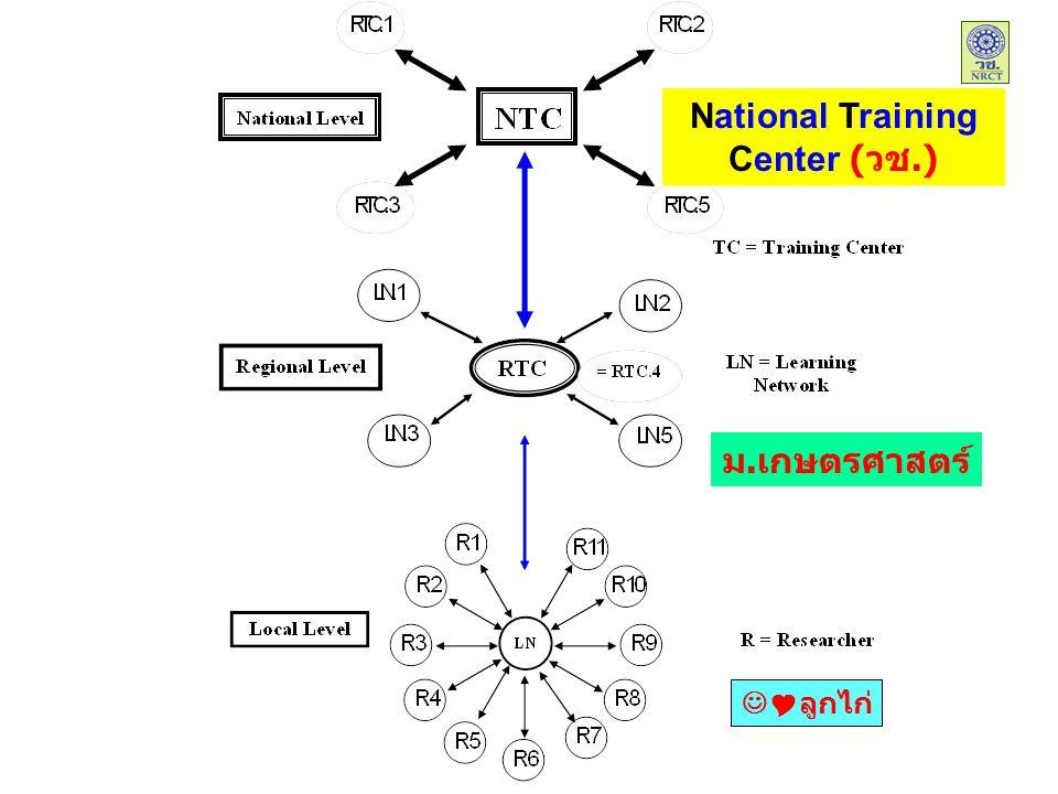 National Training Center (วช.) ม.เกษตรศาสตร์  ลูกไก่