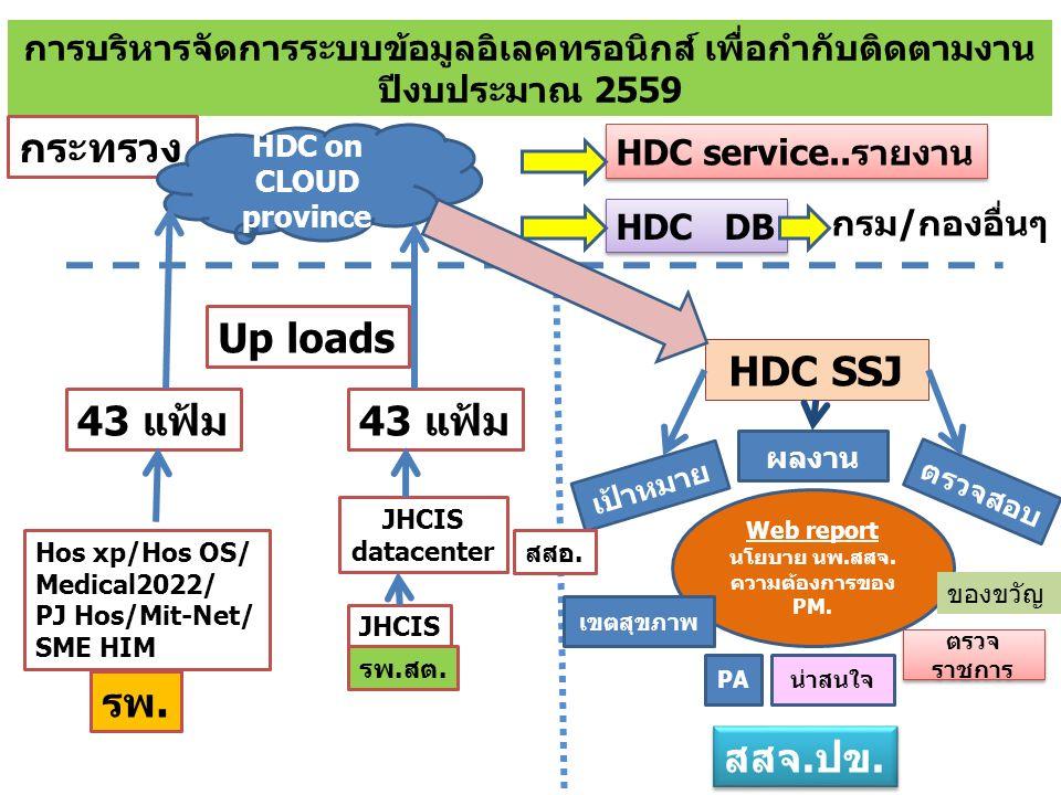 การบริหารจัดการระบบข้อมูลอิเลคทรอนิกส์ เพื่อกำกับติดตามงาน ปีงบประมาณ 2559 กระทรวง HDC on CLOUD province HDC service..รายงาน HDC DB กรม/กองอื่นๆ HDC SSJ Web report นโยบาย นพ.สสจ.