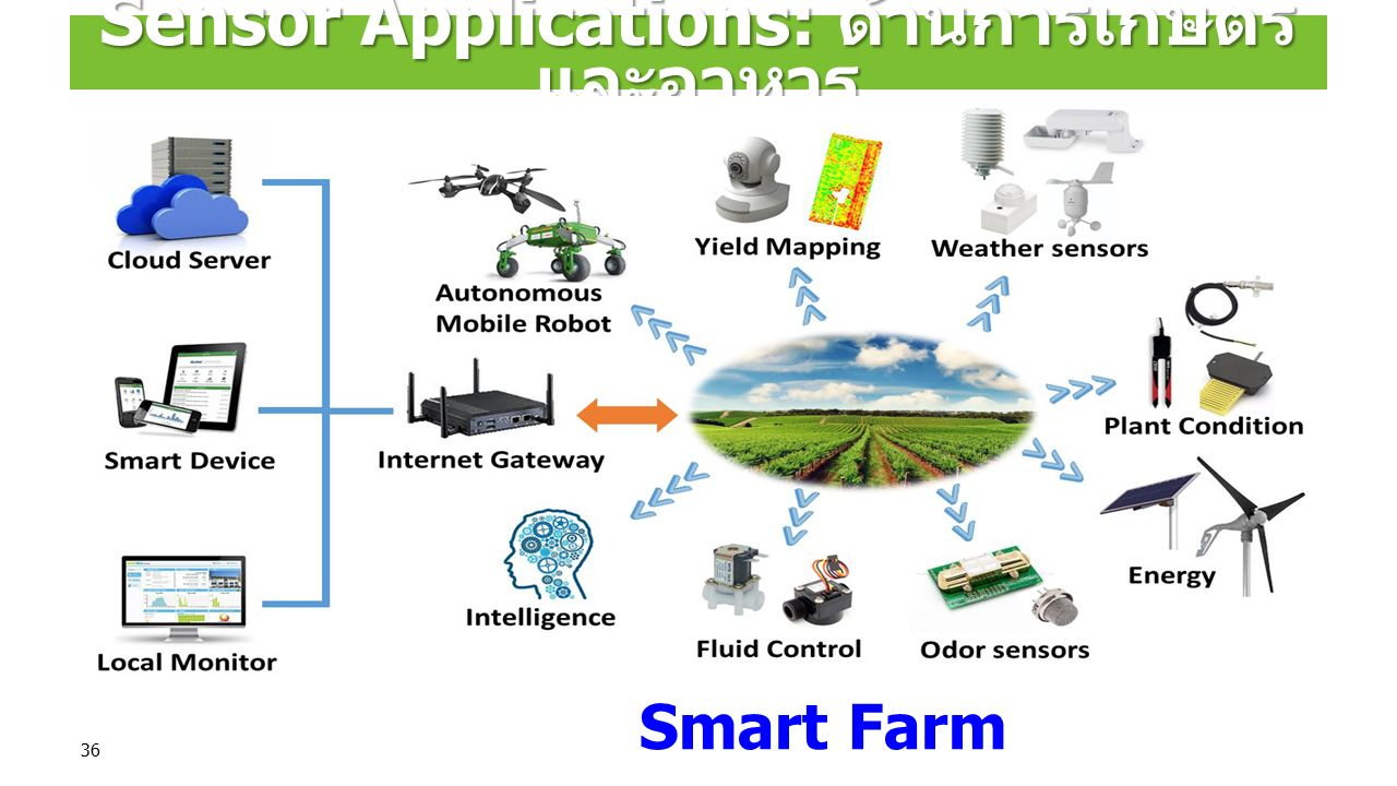 36 Sensor Applications: ด้านการเกษตร และอาหาร Smart Farm