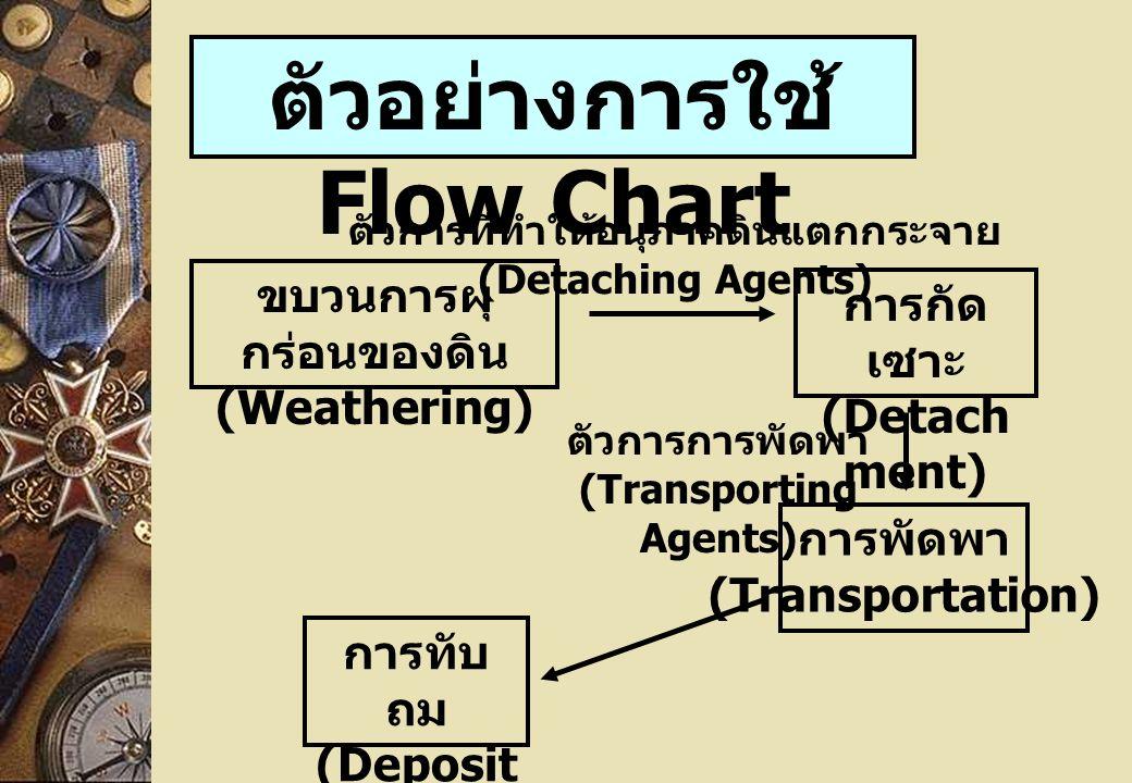 ตัวอย่างการใช้ Flow Chart ขบวนการผุ กร่อนของดิน (Weathering) การกัด เซาะ (Detach ment) การพัดพา (Transportation) การทับ ถม (Deposit ion) ตัวการที่ทำให้อนุภาคดินแตกกระจาย (Detaching Agents) ตัวการการพัดพา (Transporting Agents)