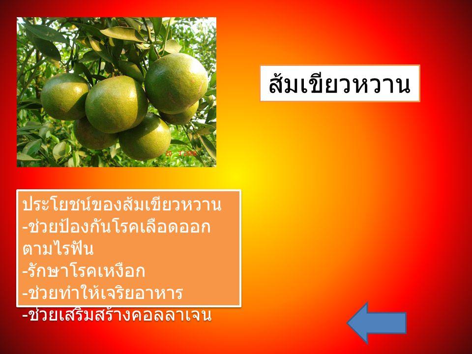 ส้มเขียวหวาน ประโยชน์ของส้มเขียวหวาน - ช่วยป้องกันโรคเลือดออก ตามไรฟัน - รักษาโรคเหงือก - ช่วยทำให้เจริยอาหาร - ช่วยเสริมสร้างคอลลาเจน ประโยชน์ของส้มเ