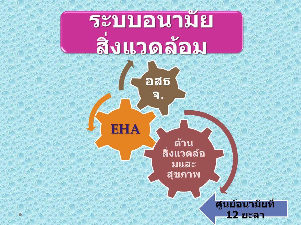 ด้าน สิ่งแวดล้อ มและ สุขภาพ EHA อสธ จ. ระบบอนามัย สิ่งแวดล้อม ศูนย์อนามัยที่ 12 ยะลา